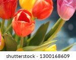 multicolored  bright bouquet of ... | Shutterstock . vector #1300168609