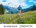 Male hiker walking the trail in the mountains with wild flowers in purple and yellow. Mt.Rainier. Washington State, USA. - stock photo