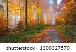 mysterious morning fog in a... | Shutterstock . vector #1300327570
