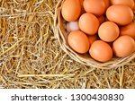 new eggs in woven rattan basket | Shutterstock . vector #1300430830