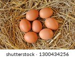 top view of eggs in straw nest | Shutterstock . vector #1300434256