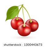 cherry realistic vector icon... | Shutterstock .eps vector #1300443673