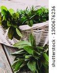 fresh herbs. melissa  rosemary... | Shutterstock . vector #1300676236