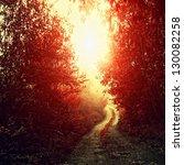 Road Through A Golden Forest A...