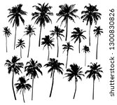 Stock vector set of vector silhouettes of palm trees of different shapes isolated on white background for your 1300830826