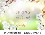 spring  background with... | Shutterstock .eps vector #1301049646