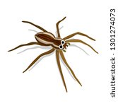 weird and colorful spider... | Shutterstock .eps vector #1301274073