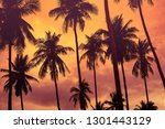 copy space of silhouette... | Shutterstock . vector #1301443129
