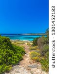footpath to the coast of... | Shutterstock . vector #1301452183