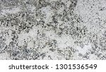 travertine wall texture | Shutterstock . vector #1301536549