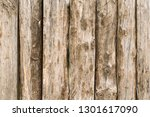 texture of raw rustic wood. can ...   Shutterstock . vector #1301617090