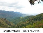scene of forest on the moutains ... | Shutterstock . vector #1301769946