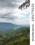 scene of forest on the moutains ... | Shutterstock . vector #1301770153