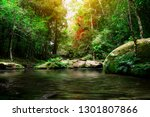 beautiful rainforest with the... | Shutterstock . vector #1301807866