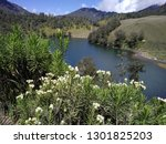 ranu kumbolo  lake in the... | Shutterstock . vector #1301825203