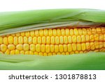 ear of corn isolated on a white ... | Shutterstock . vector #1301878813