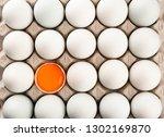Chicken Egg Is Half Broken In...