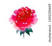 red rose in watercolor technics | Shutterstock . vector #1302250609