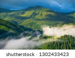 forest in the mountains. summer ... | Shutterstock . vector #1302433423