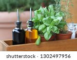 fresh mint and rosemary in pots ... | Shutterstock . vector #1302497956