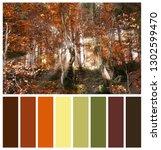 beautiful landscape with autumn ... | Shutterstock . vector #1302599470