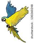macaw  ara ararauna  blue and... | Shutterstock .eps vector #130260248
