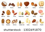 nut icons set. cartoon set of... | Shutterstock .eps vector #1302691870