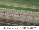 zdencina  croatia   july 19 ...   Shutterstock . vector #1302749839