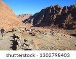 egypt  sinai peninsula ... | Shutterstock . vector #1302798403