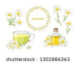 chamomile set. bouquet  wreath  ... | Shutterstock .eps vector #1302886363