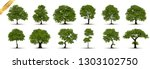 collection of tree trees... | Shutterstock .eps vector #1303102750