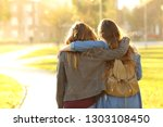 back view portrait of two... | Shutterstock . vector #1303108450