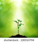 new life | Shutterstock . vector #130314704
