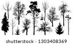 forest trees without leaves.... | Shutterstock .eps vector #1303408369