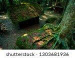 red maple leaves season in phu... | Shutterstock . vector #1303681936