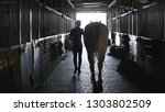young jockey walking with a...   Shutterstock . vector #1303802509
