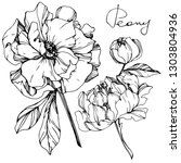 vector peony floral botanical...   Shutterstock .eps vector #1303804936