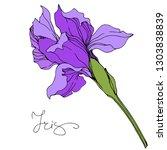 Vector Purple Iris Floral...