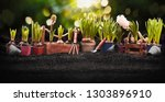 gardening tools and plants on... | Shutterstock . vector #1303896910