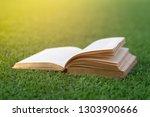 old books open on green grass.   Shutterstock . vector #1303900666