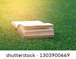 old books open on green grass.   Shutterstock . vector #1303900669