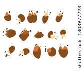 vector set of chocolate covered ... | Shutterstock .eps vector #1303977223
