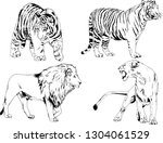 set of vector drawings on the...   Shutterstock .eps vector #1304061529