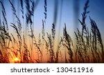 Sunset Landscape Scene With...