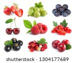 fruits. collection of sweet... | Shutterstock . vector #1304177689