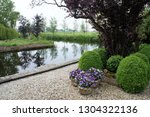 three bowls of purple pansies...   Shutterstock . vector #1304322136