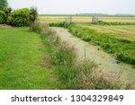 an algae filled waterway winds...   Shutterstock . vector #1304329849