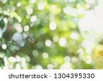 green bokeh nature abstract... | Shutterstock . vector #1304395330