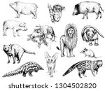 Big set of different hand drawn sketch style animals isolated on white background. Vector illustration.
