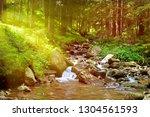 mountain river flowing through... | Shutterstock . vector #1304561593